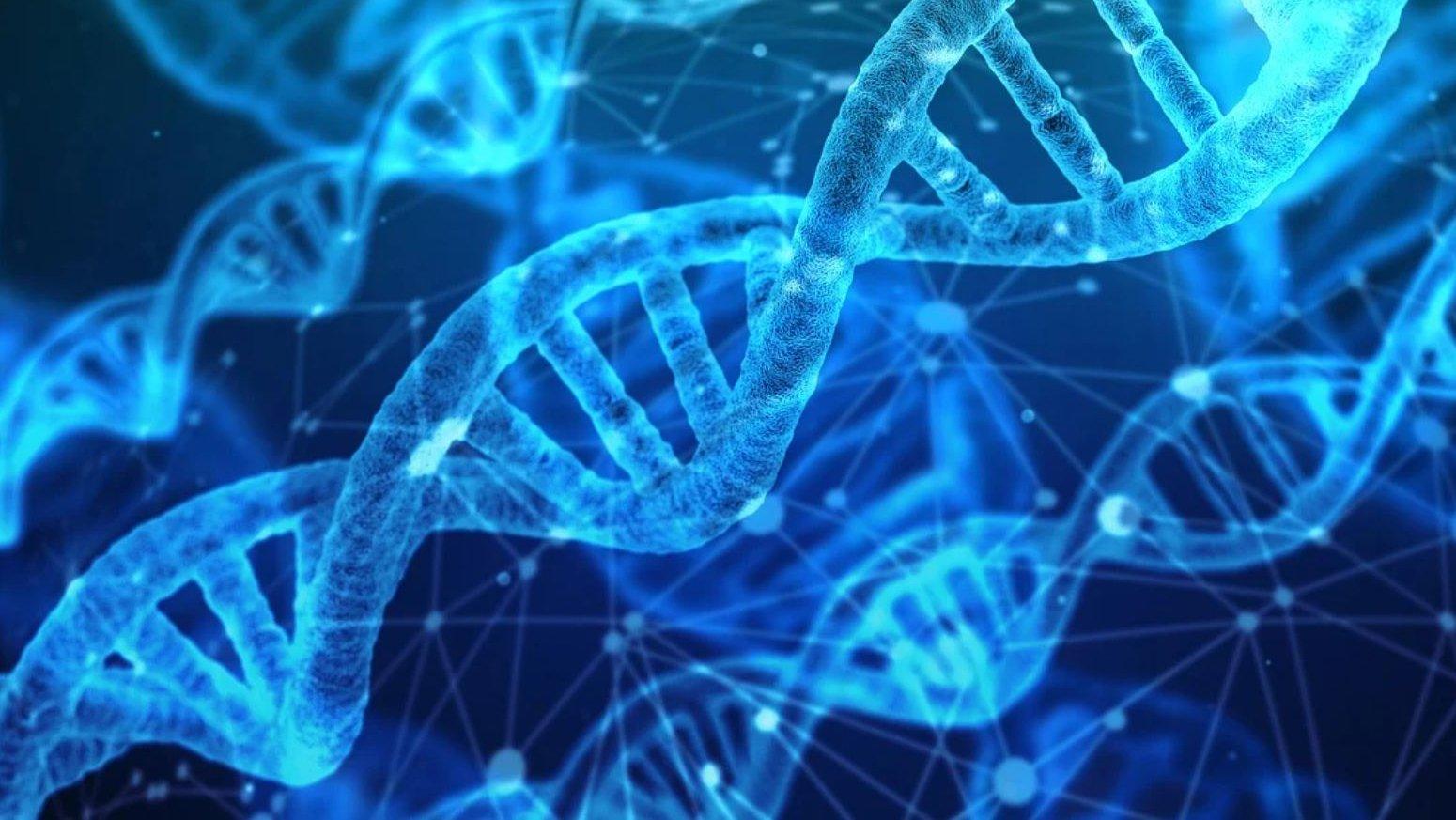 estudio-genético-covid-csic