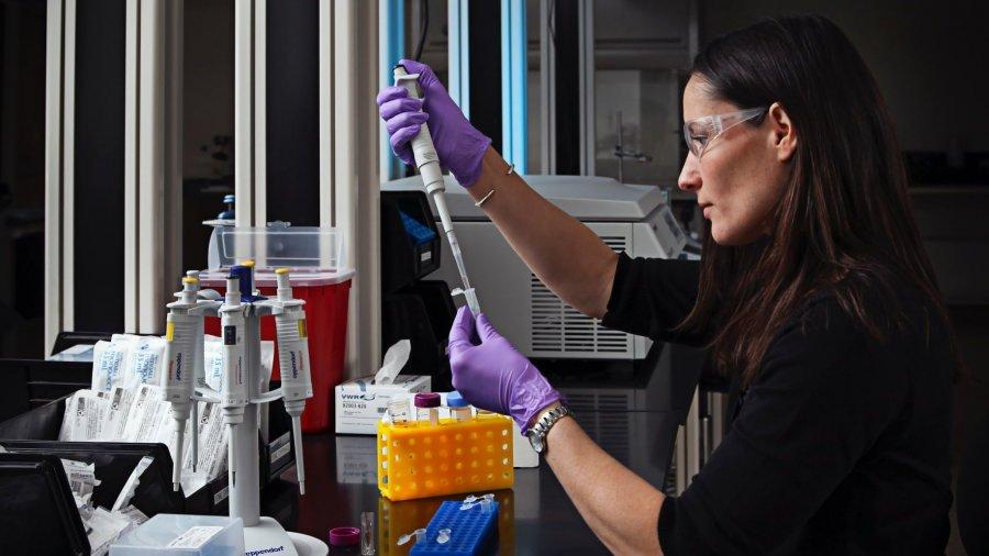 laboratorio-investigador