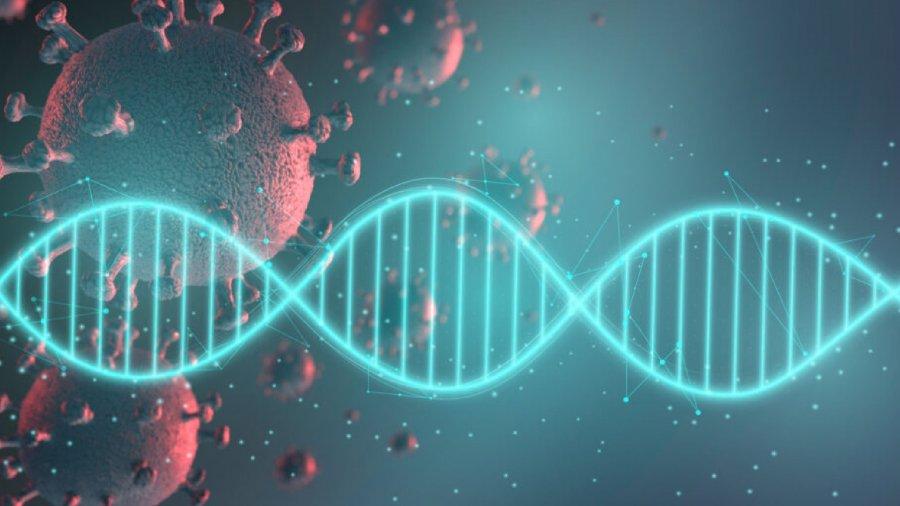 covid-genetica