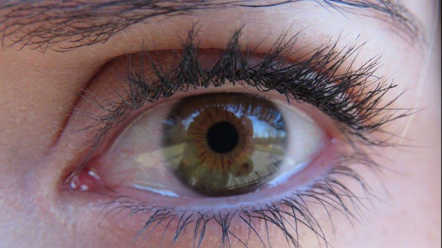 enfermedades-retina