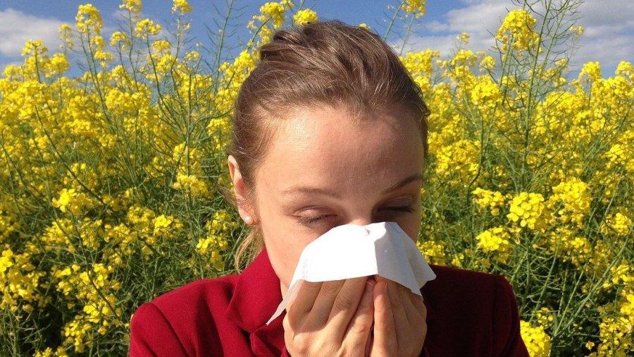 rinitis-alérgica